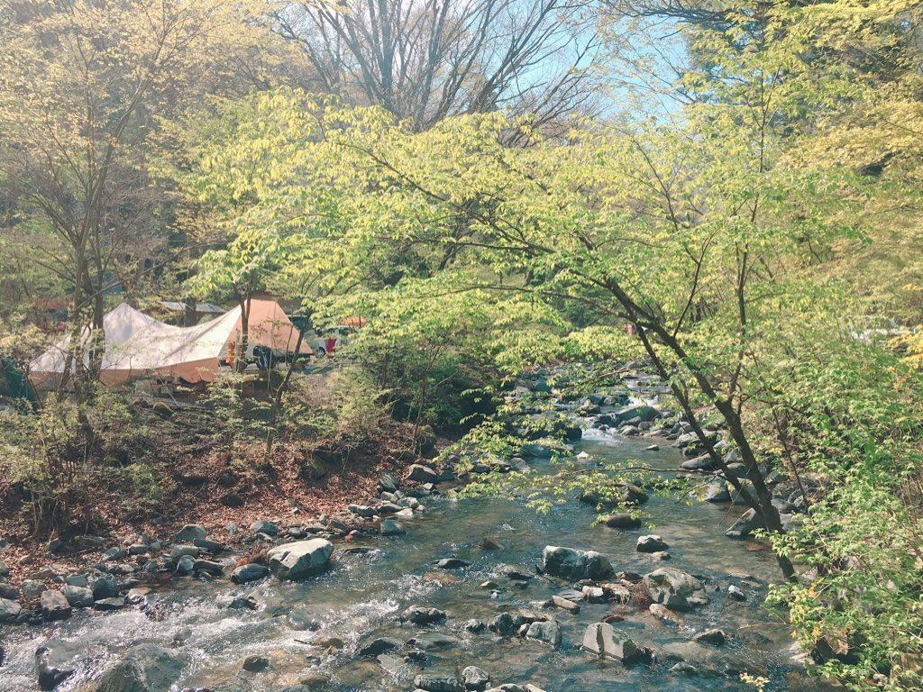 道志 の 森 キャンプ 場